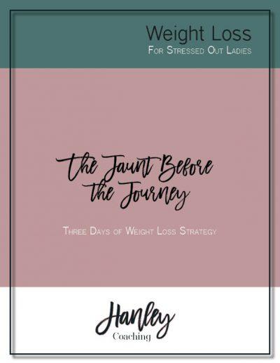 Freebie Jaunt Before the Journey Journal